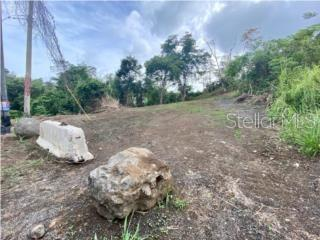 Carretera 175 CARRETERA 175 Property Photo - TRUJILLO ALTO, PR real estate listing