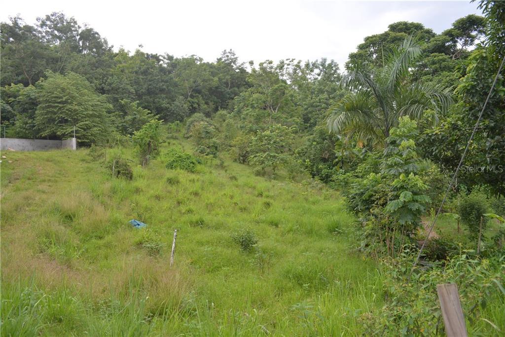 Carr 642 Km 4.1 Int Bo. Rio Arriba Saliente Property Photo