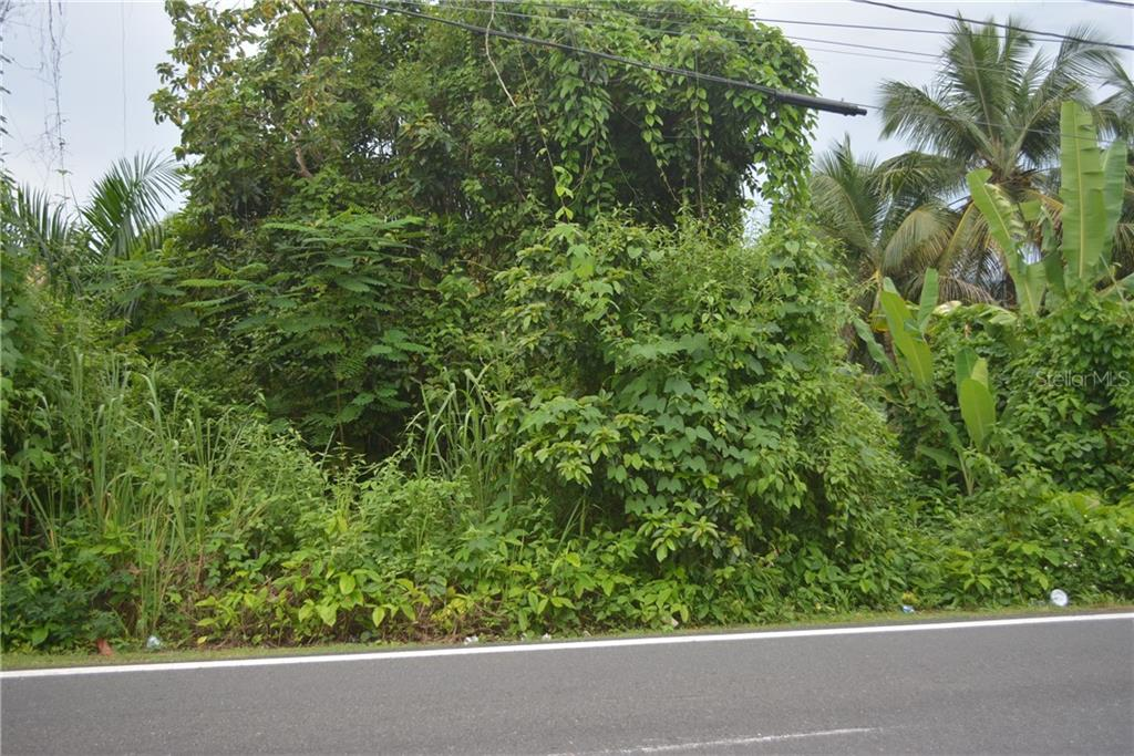 CARR 643 KM 1.2 RIO ARRIBA SALIENTE Property Photo - MANATI, PR real estate listing