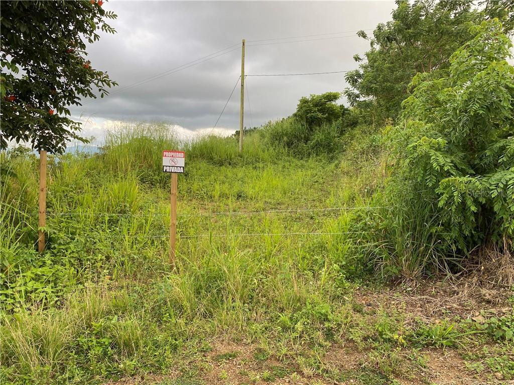 CARR 722 KM 6.4 INT BO. ROBLES Property Photo - AIBONITO, PR real estate listing