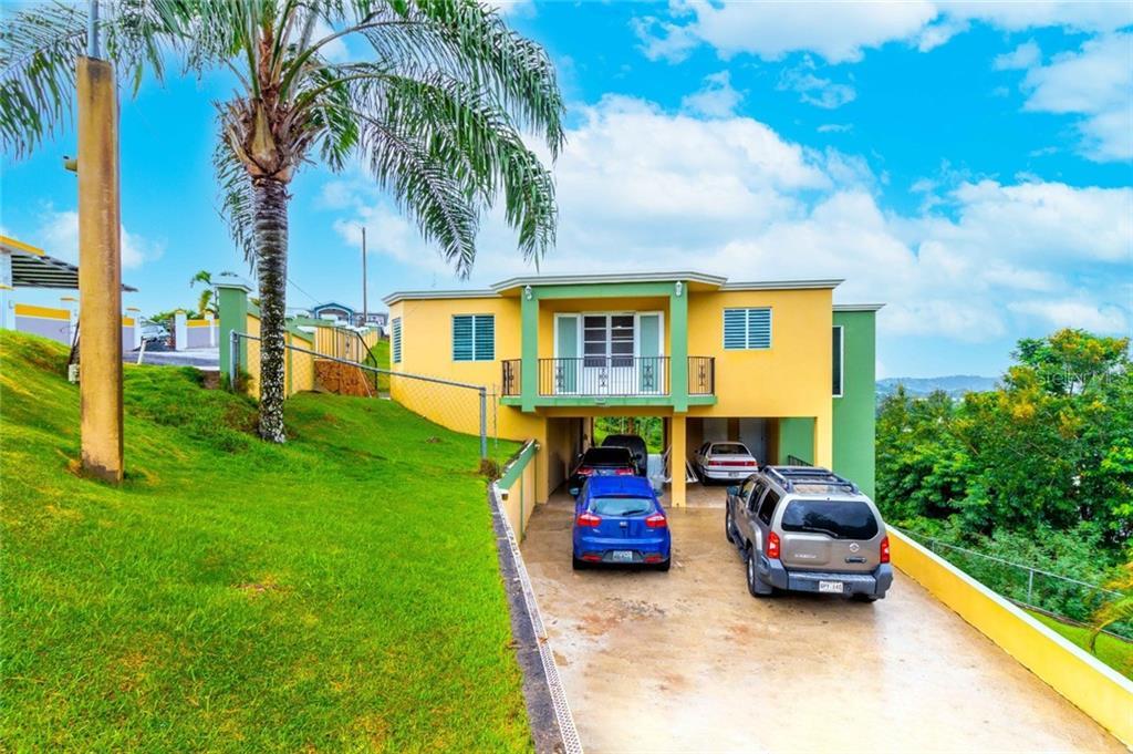 Carr 916 BO CAYAGUAS Property Photo - SAN LORENZO, PR real estate listing