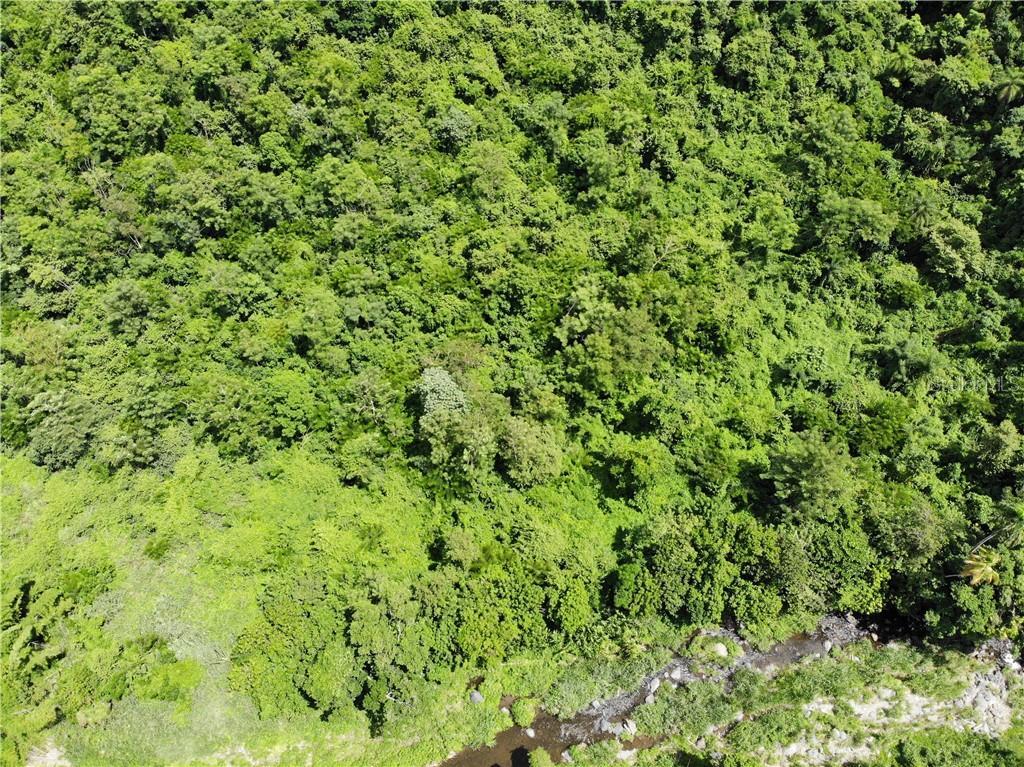 PR 378 BO. SIERRA Property Photo - GUAYANILLA, PR real estate listing