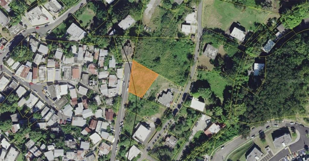 EL CERRO DE LOS ROBLES Property Photo - RINCON, PR real estate listing