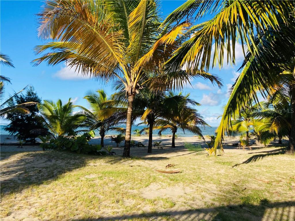 Condo. OCEAN POINT #4602 Property Photo - LOIZA, PR real estate listing