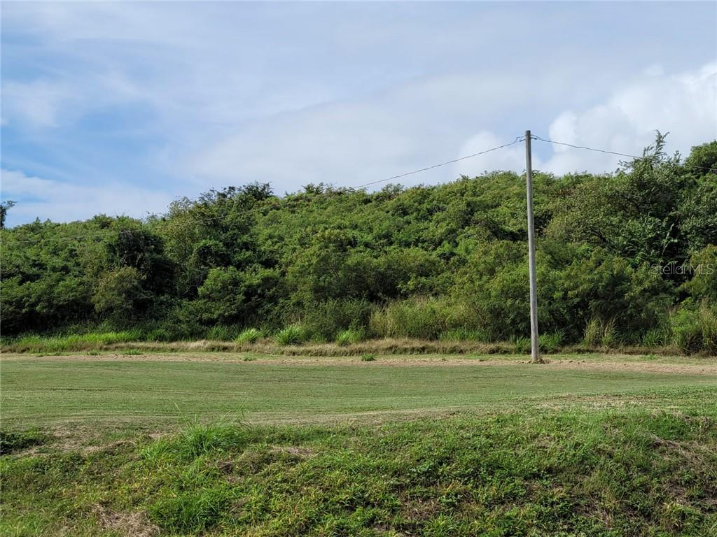 BARRIO RIO CANAS ARRIBA Property Photo - JUANA DIAZ, PR real estate listing