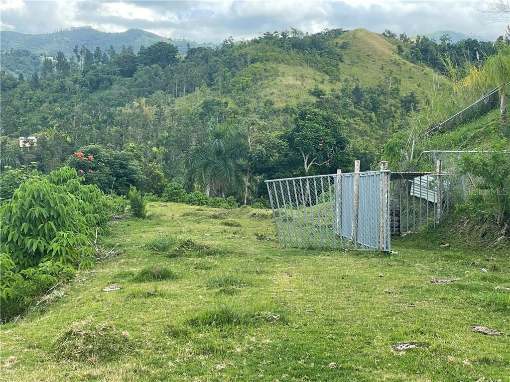 CARR 156 KM 2.0 INT BO. OROCOVIS Property Photo - OROCOVIS, PR real estate listing