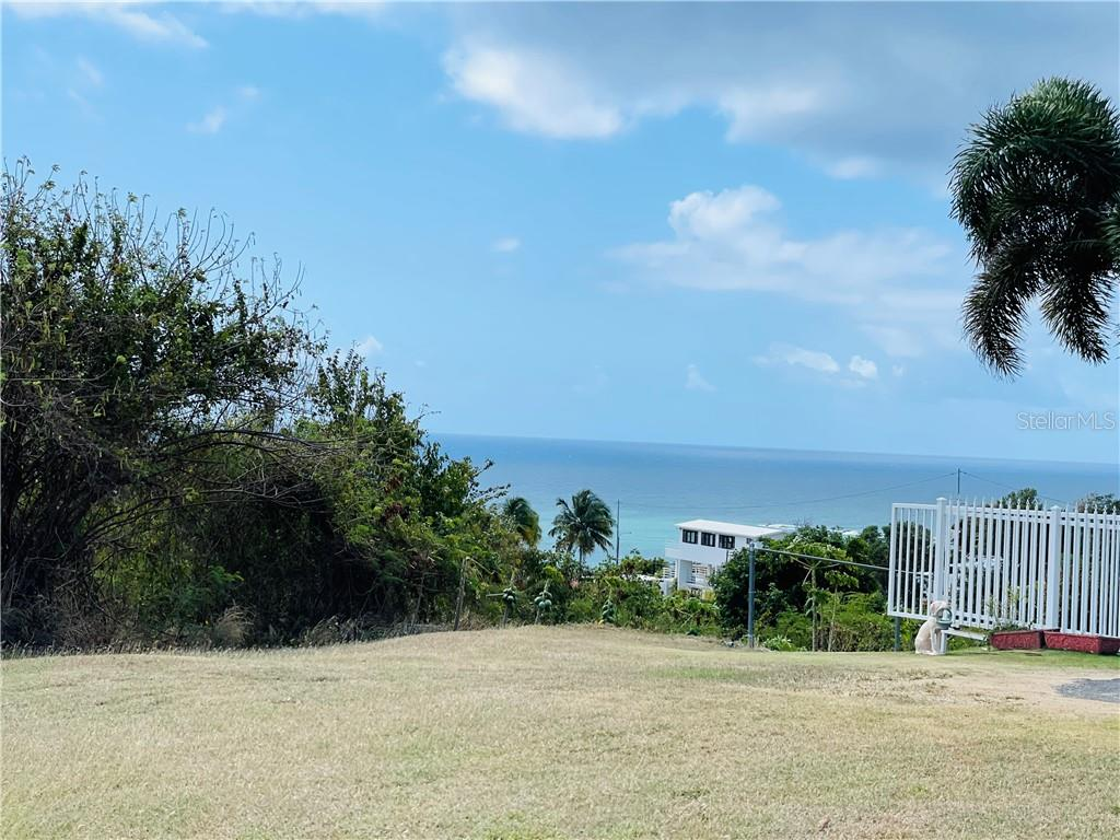 LOTE 7 BO CAMINO NUEVO Property Photo - YABUCOA, PR real estate listing