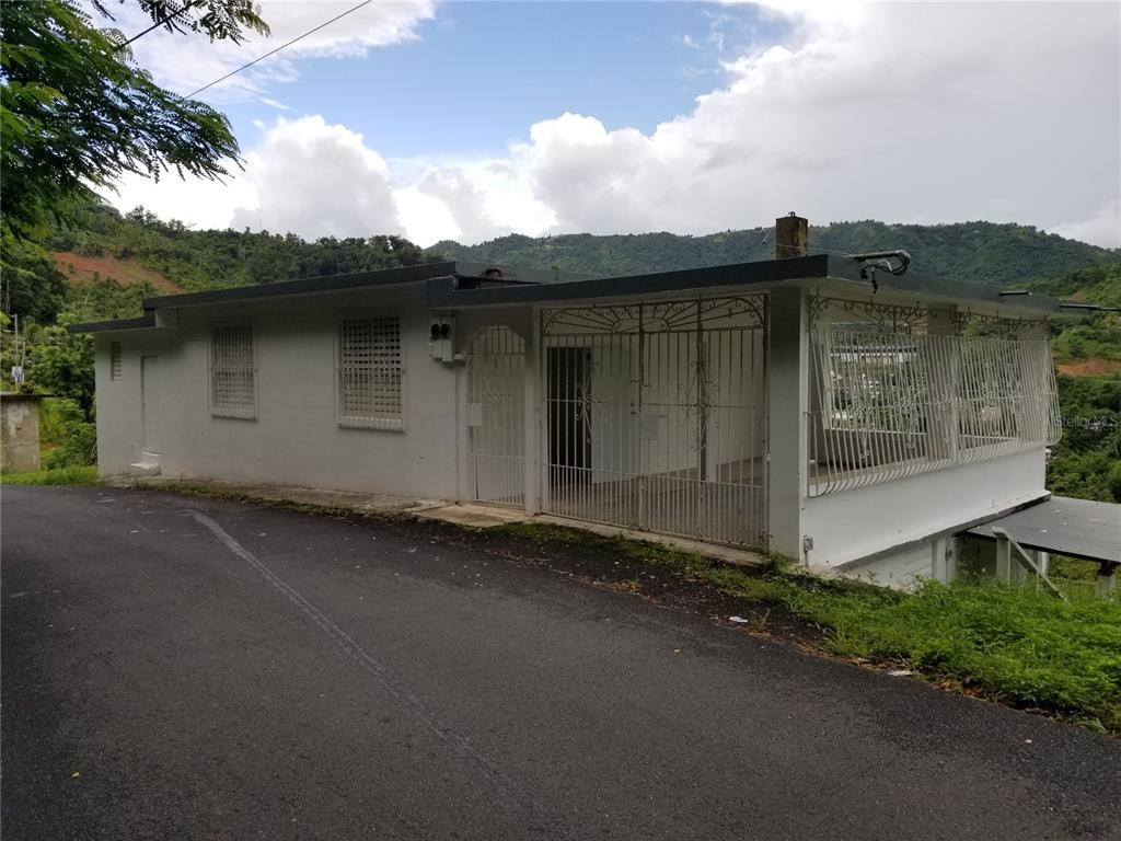 Carr. 5 Int. Carr. 826 BO. GUARDIANA Property Photo - NARANJITO, PR real estate listing