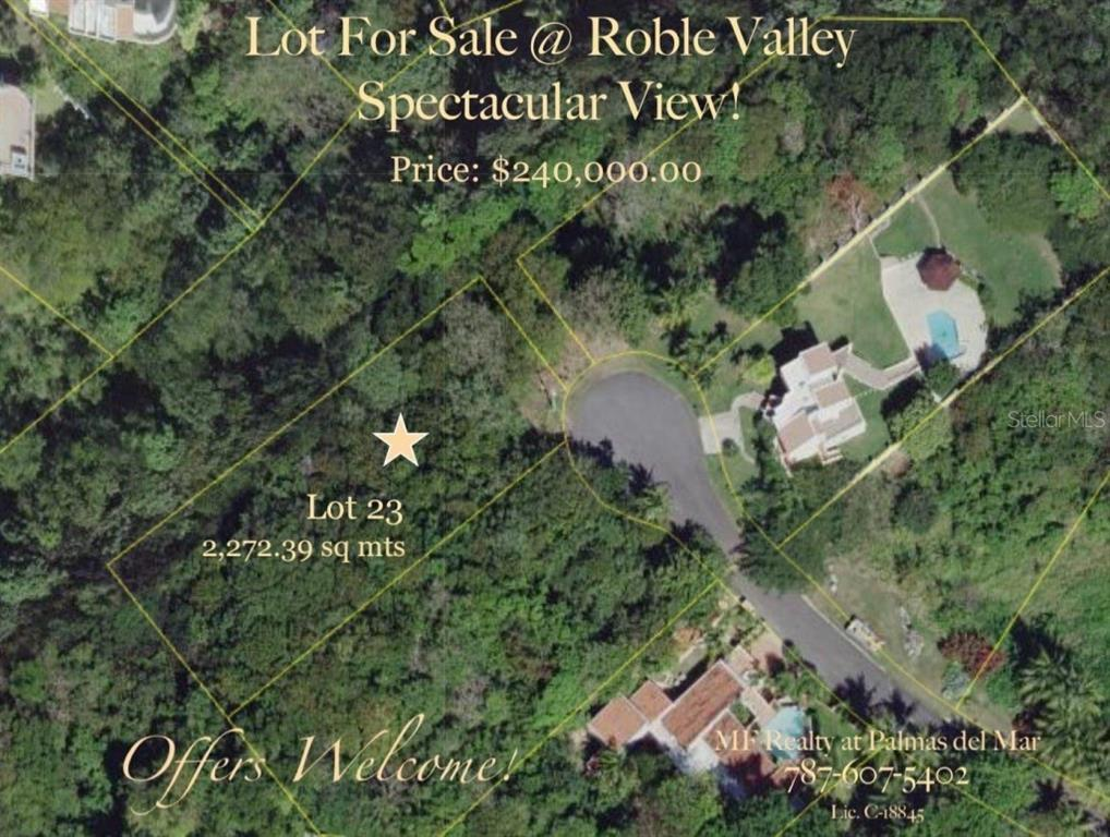 ROBLE VALLEY #23 Property Photo - HUMACAO, PR real estate listing