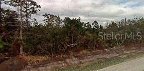 604 KISSIMMEE LANE Property Photo