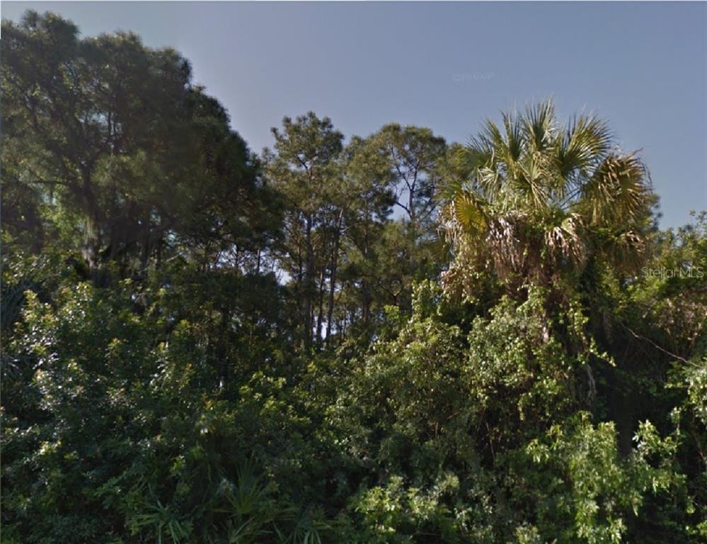 WASHINGTON BLVD Property Photo - CHIPLEY, FL real estate listing