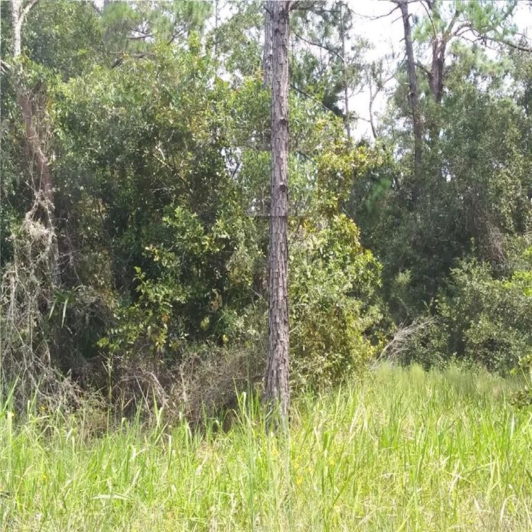 GREENHEAD RD Property Photo - CHIPLEY, FL real estate listing