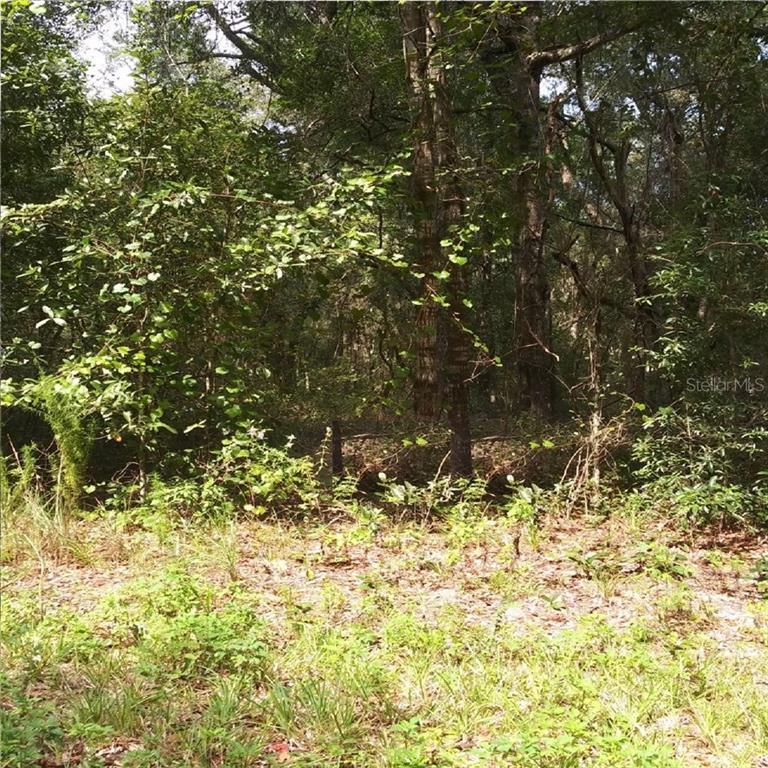 3308 TEAKWOOD DR Property Photo - SEBRING, FL real estate listing