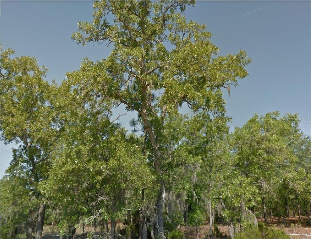 12TH ST Property Photo - INTERLACHEN, FL real estate listing