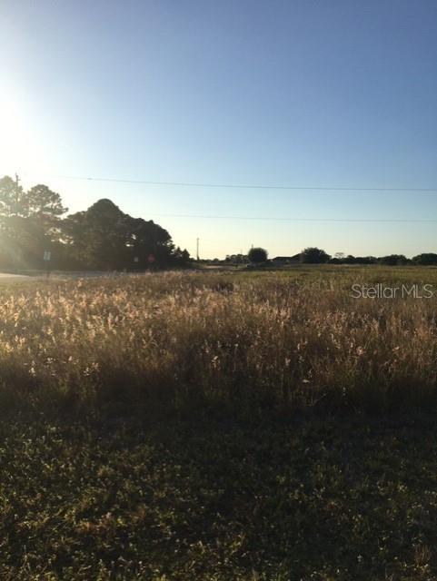 9011 TEA CT Property Photo - LABELLE, FL real estate listing