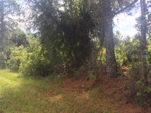 OSBORNE ST Property Photo - INTERLACHEN, FL real estate listing