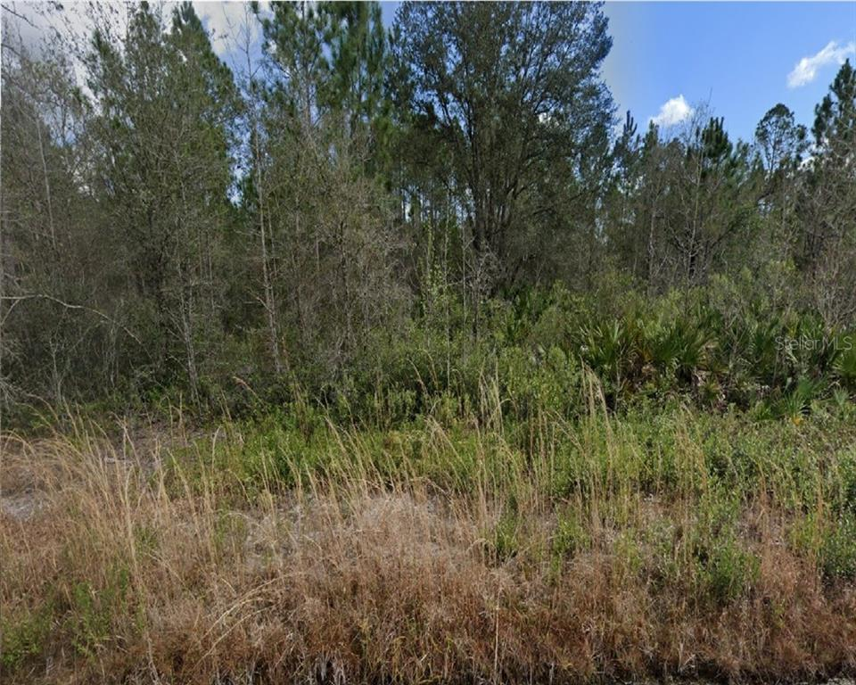 YEAGER AVE Property Photo - BUNNELL, FL real estate listing