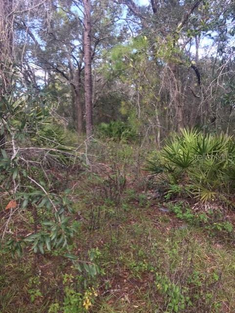 1052 AINSWORTH ST E Property Photo - LEHIGH ACRES, FL real estate listing