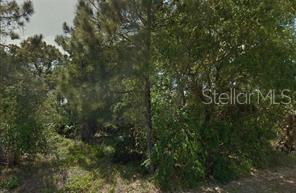 108 WOODBINE RD Property Photo - SATSUMA, FL real estate listing