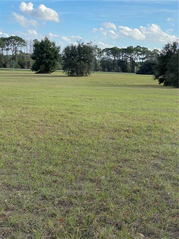 22182 OBRIEN RD Property Photo - HOWEY IN THE HILLS, FL real estate listing