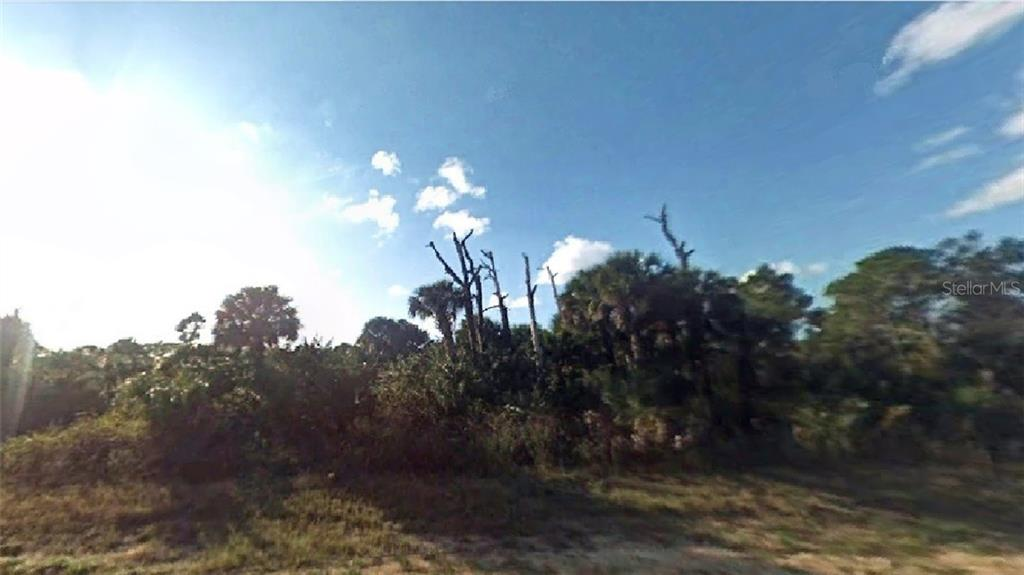 1318 N ANDOVER DRIVE Property Photo - LABELLE, FL real estate listing