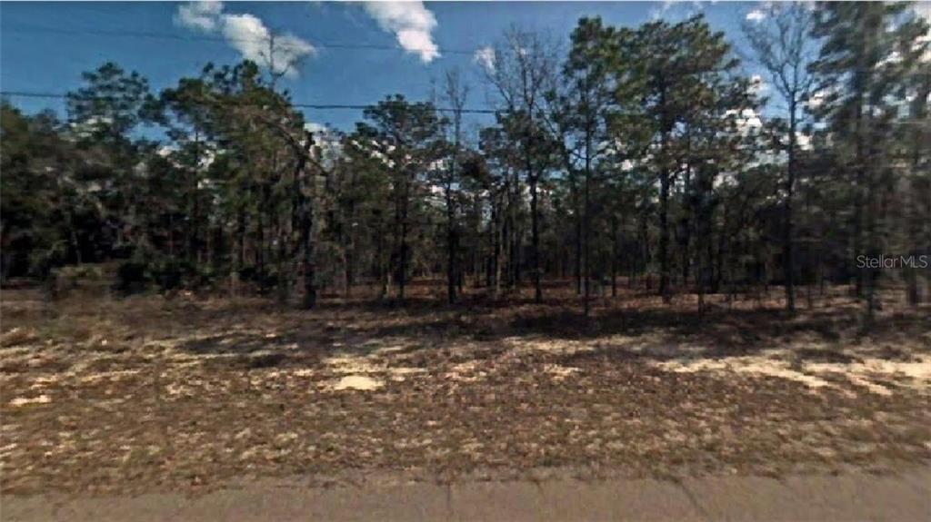 9587 N Wayland Avenue Property Photo