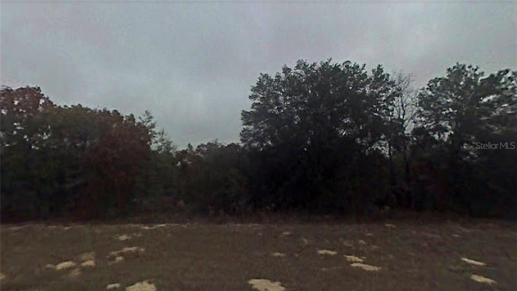 MULBERRY DRIVE Property Photo - MARIANNA, FL real estate listing