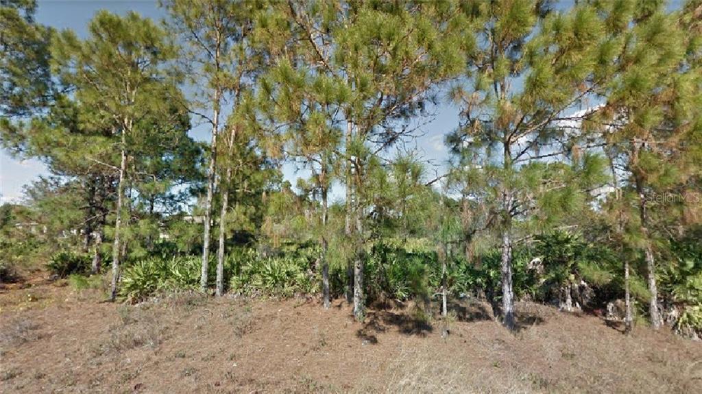 1023 Hunter Street E Property Photo