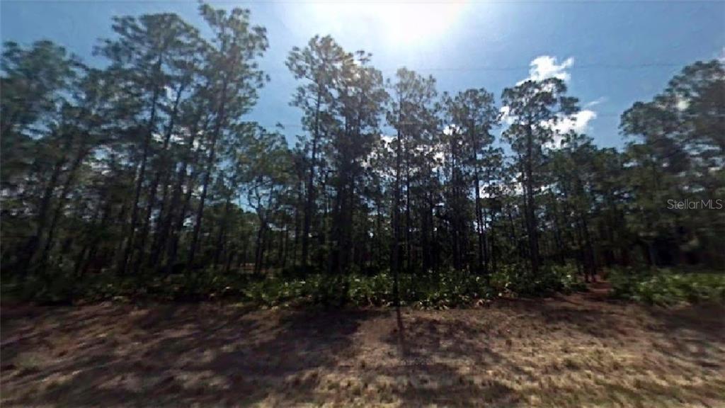 18 WELLS AVENUE Property Photo - LEHIGH ACRES, FL real estate listing