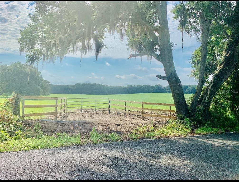 16101 SE 150TH AVENUE Property Photo - WEIRSDALE, FL real estate listing