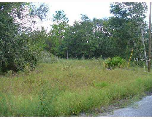 FISHER WAY TRL Property Photo - WEIRSDALE, FL real estate listing