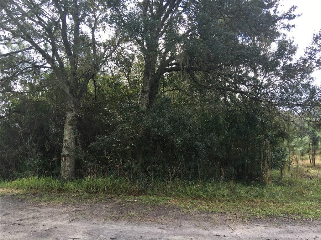 1ST ST Property Photo - KENANSVILLE, FL real estate listing