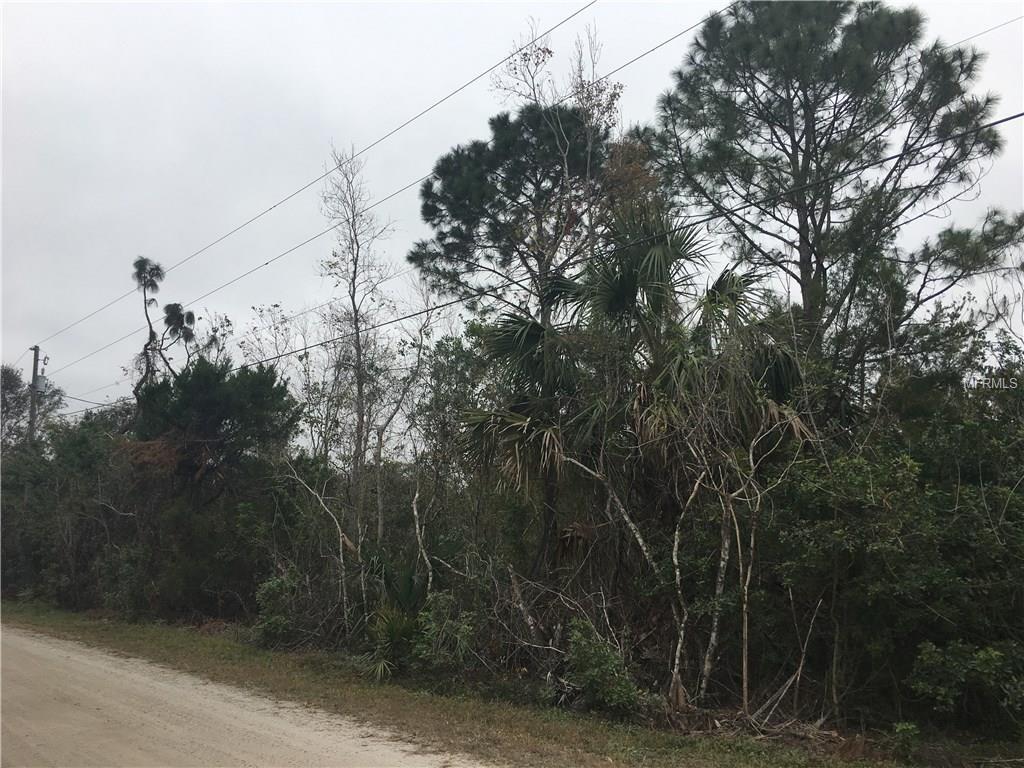 1017 PONCHOS LN Property Photo - CHRISTMAS, FL real estate listing