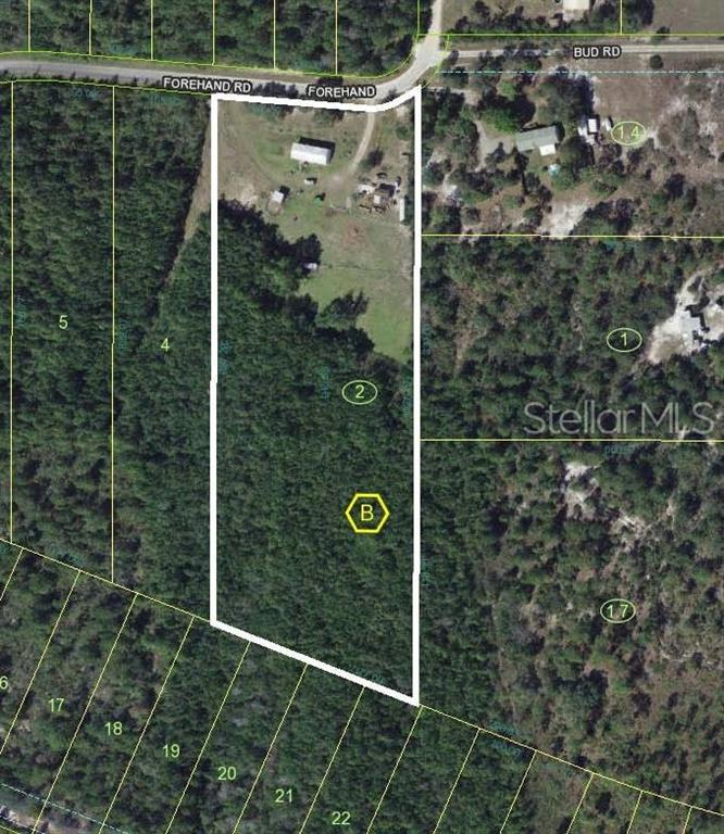 7100 FOREHAND ROAD Property Photo - DAVENPORT, FL real estate listing