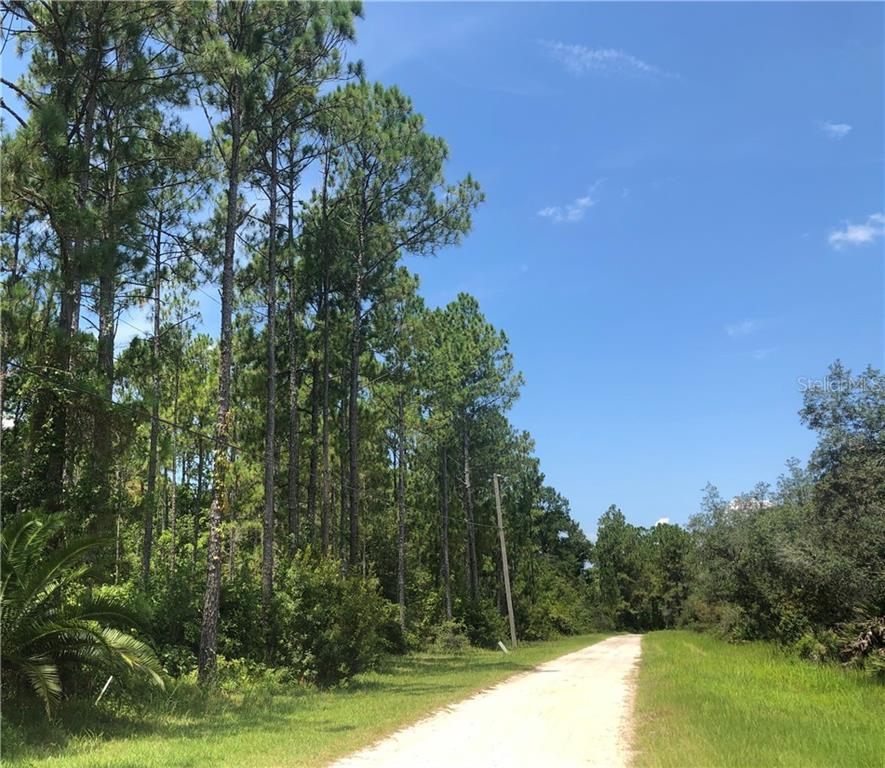 Thacker Trail Property Photo