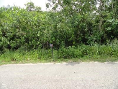 Mountain Drive Property Photo