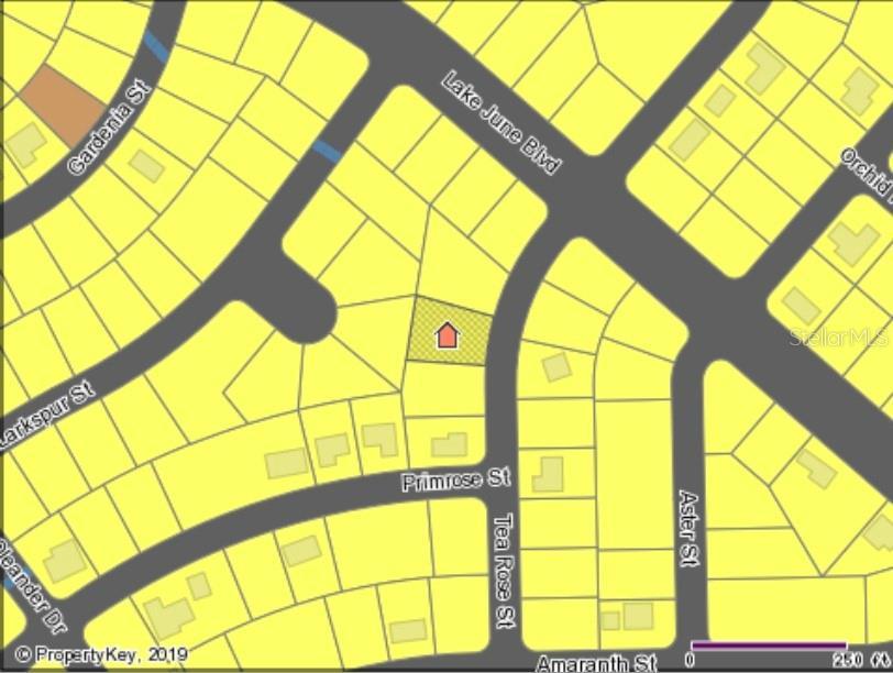 915 TEA ROSE ST Property Photo - LAKE PLACID, FL real estate listing