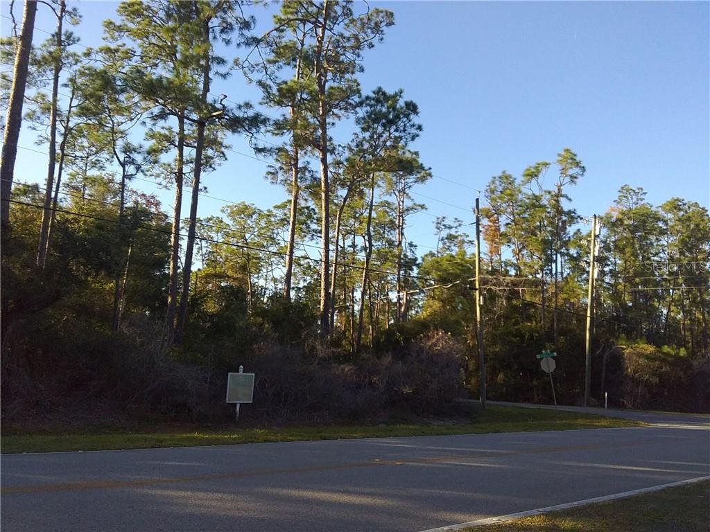 12900 LAKE MARY JANE ROAD Property Photo