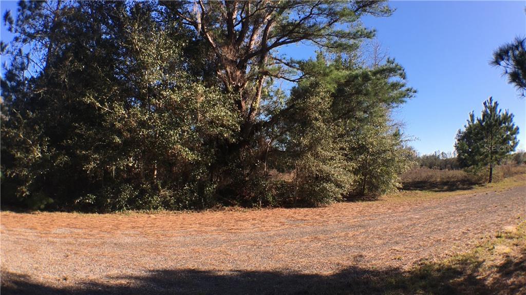 8043 N Terrel Pt Property Photo