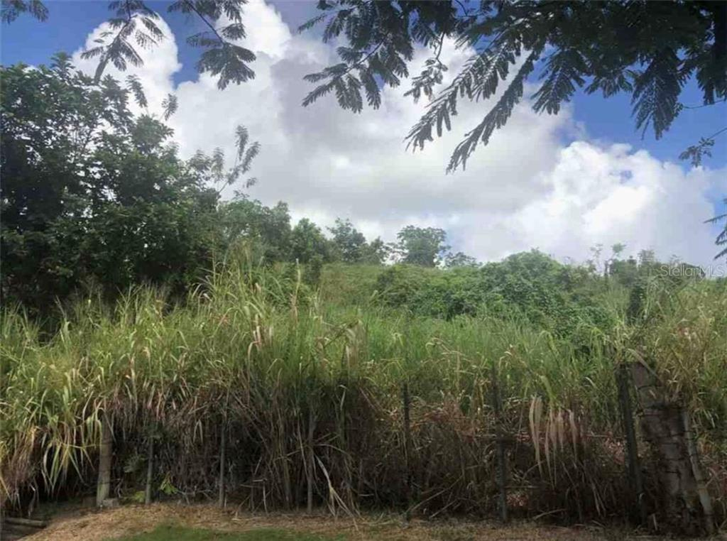 Km. 1.5 PR 818 Property Photo - COROZAL, PR real estate listing