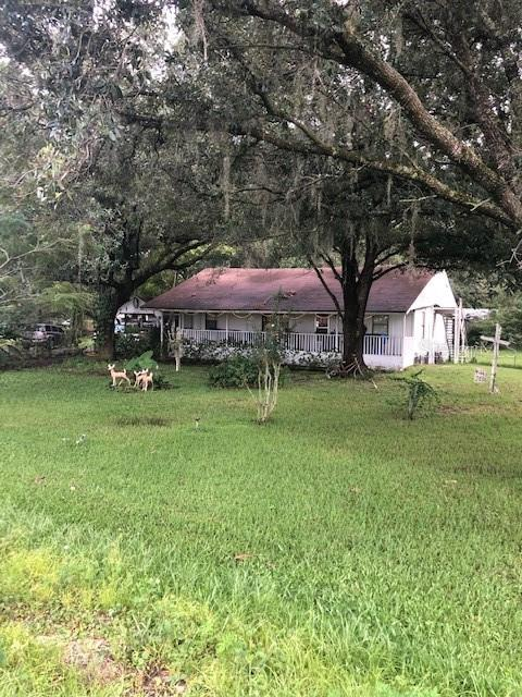 3654 BOGGY CREEK ROAD Property Photo