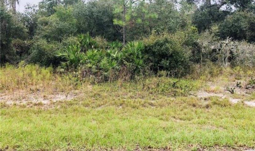 1311 Congo Court Property Photo