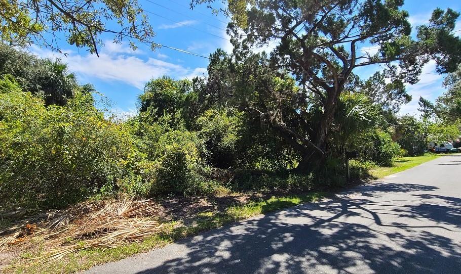 BAY STREET Property Photo - CEDAR KEY, FL real estate listing