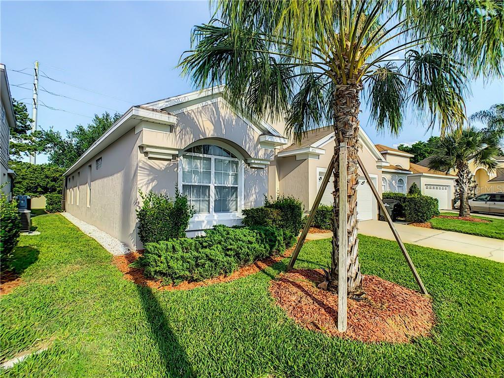 8212 Fan Palm Way Property Photo