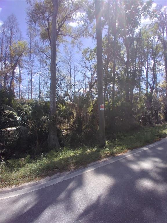 2050 EVANS ROAD Property Photo - POLK CITY, FL real estate listing
