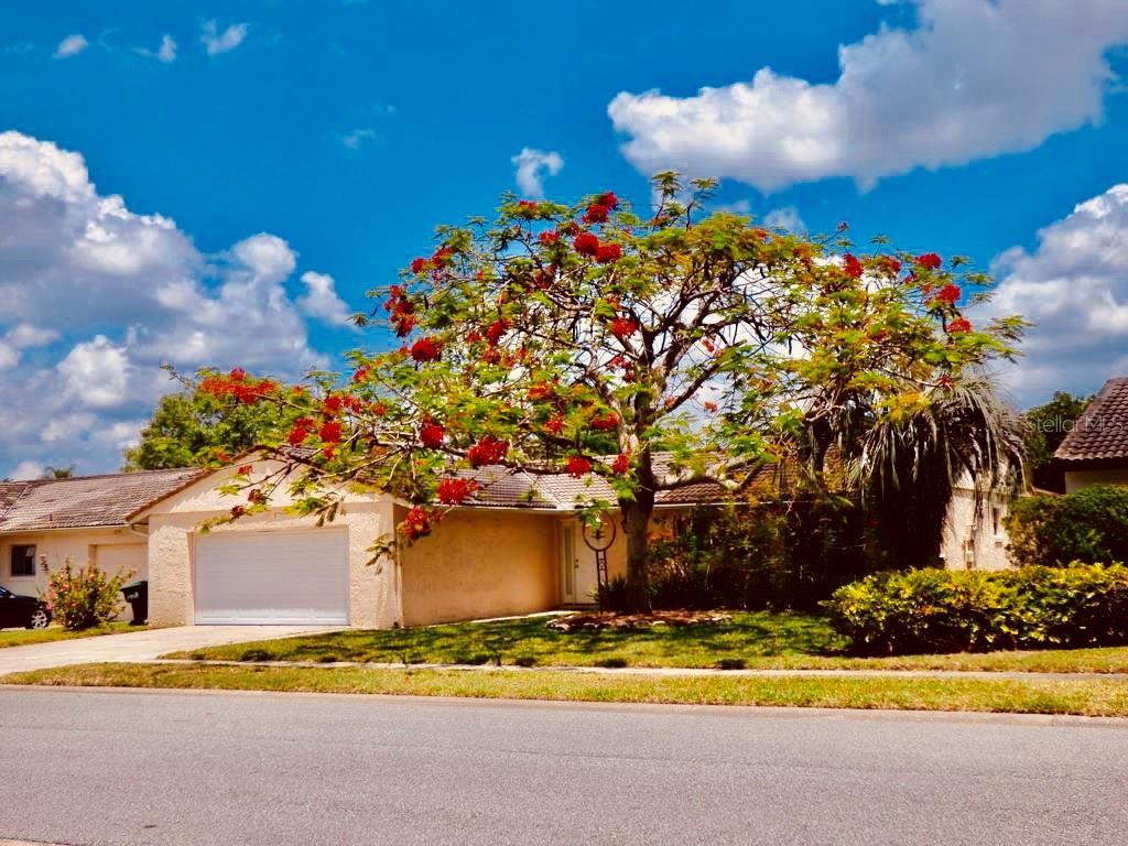 10563 MONTPELIER CIRCLE Property Photo - ORLANDO, FL real estate listing