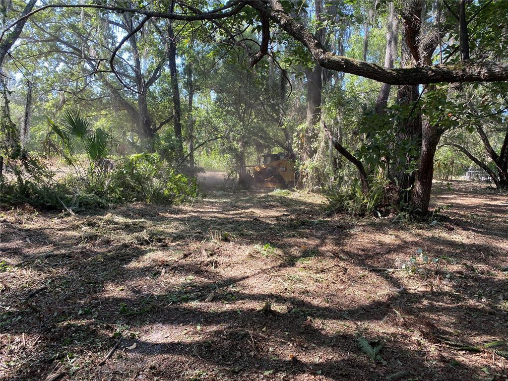 Lakewood Drive Property Photo