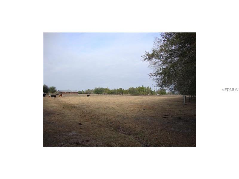 13252 HOBSON SIMMONS ROAD Property Photo - LITHIA, FL real estate listing