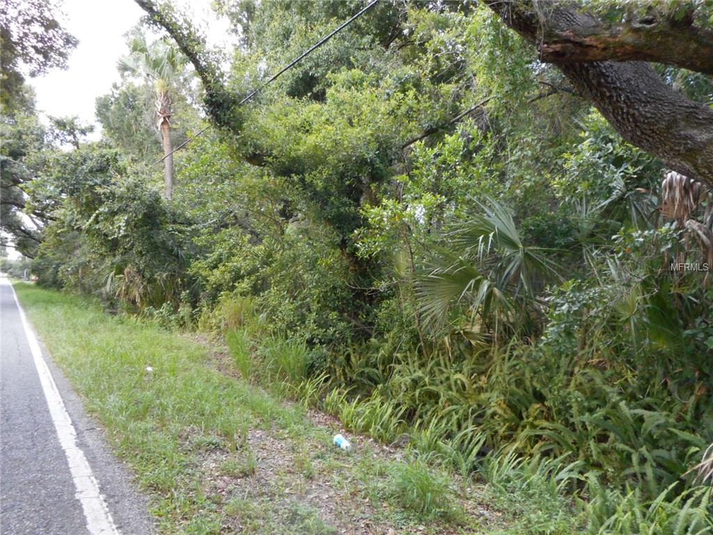WILLIAMS RD Property Photo - BRANDON, FL real estate listing