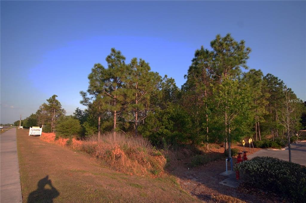 30150 OVERPASS RD Property Photo - WESLEY CHAPEL, FL real estate listing